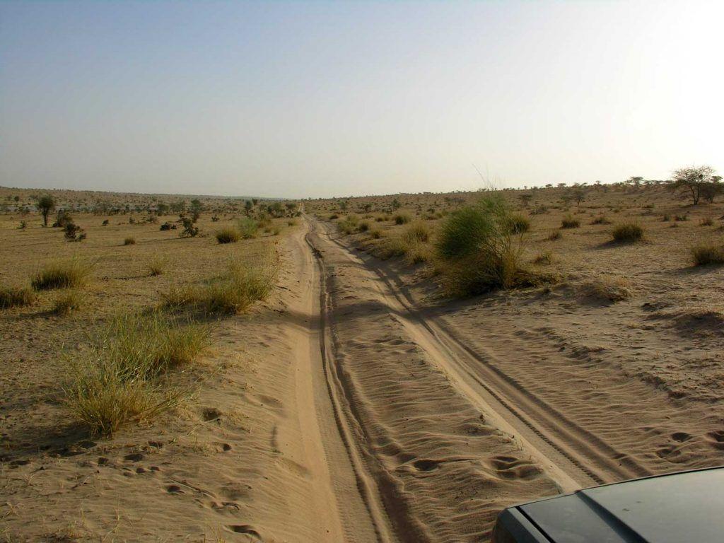 Camino dunas desierto