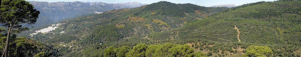 Valle del Genal, Jubrique