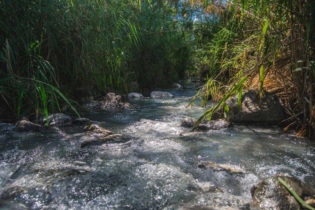 Baños romanos de la Hedionda, Casares