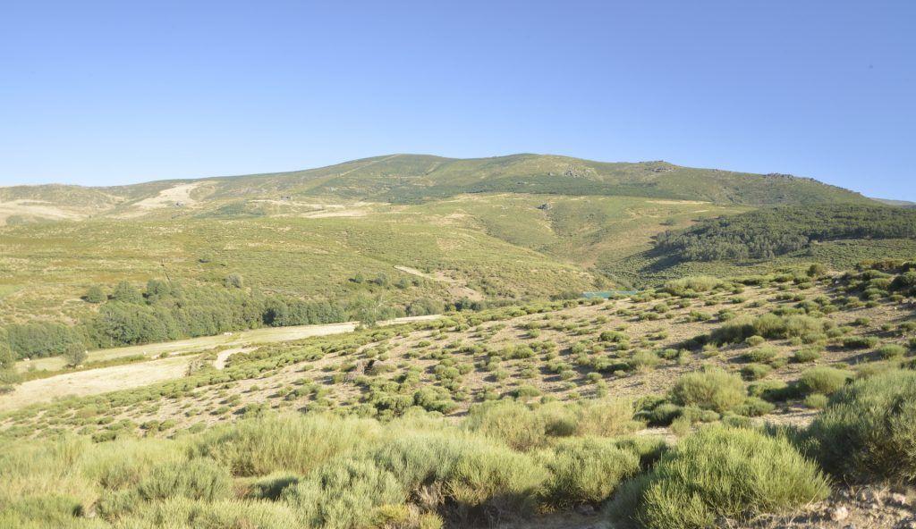 Cerro de Mesas Altas desde puerto de Tornavacas