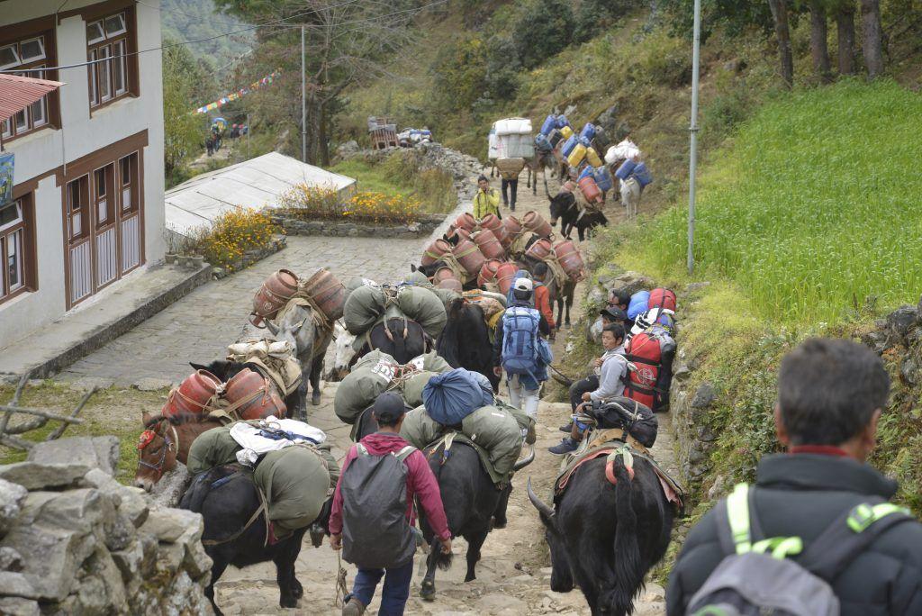 Saliendo de Lukla hacia el Parque Nacional. Nepal
