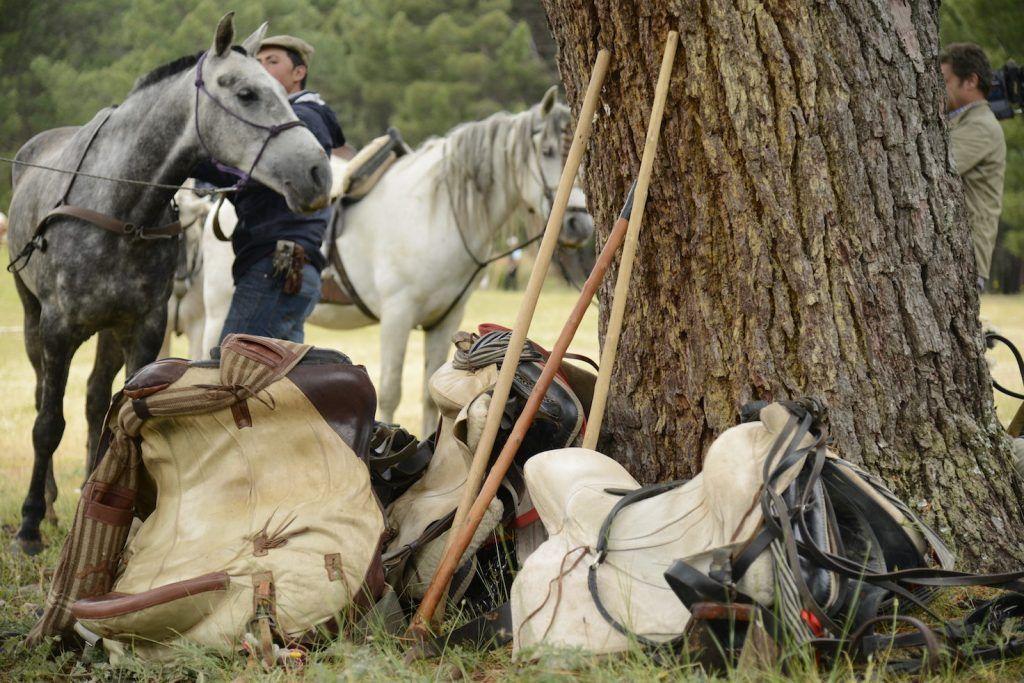 Aperos de vaquero