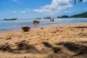 Perros Haad Sairee Beach